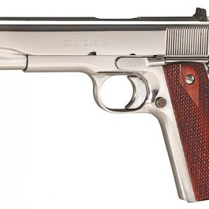 BUY COLT BRIGHT STAINLESS GOVERNMENT